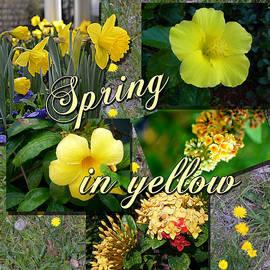 Larry Bishop - Spring in Yellow