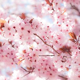 Roselynne Broussard - Spring