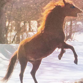 Patricia Keller - Stallion