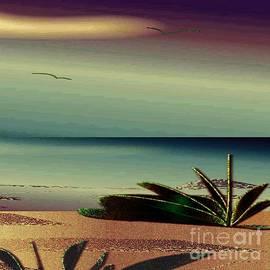 Iris Gelbart - Sunset on the Beach