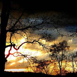 Rabiah Seminole - Sunset