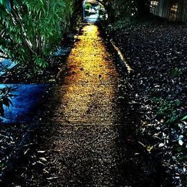 Leslie Hunziker - Sunset Walk