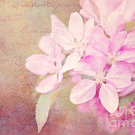 Reflective Moments  Photography and Digital Art Images - Sweet Memories