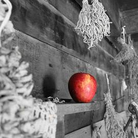 Laurinda Bowling - The Apple
