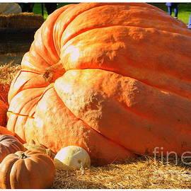 Dora Sofia Caputo Photographic Art and Design - The Biggest Pumpkin