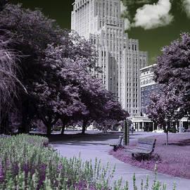 Jef Franklin - The Plaza in Infrared