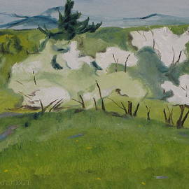 Francois Fournier - The White Trees