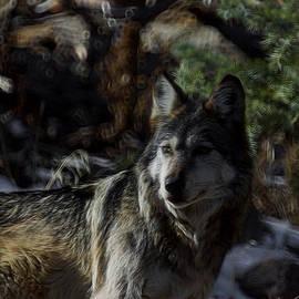 Ernie Echols - The Wolf Digital Art