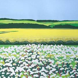 Janet Darley - Towards North