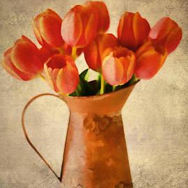 Darren Fisher - Tulips of Spring