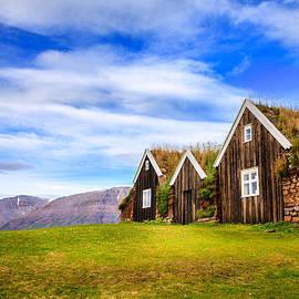 Alexey Stiop - Turf houses