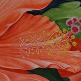 Mary Deal - Two Pumpkin Hibiscus