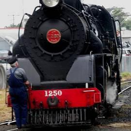 Sandra Sengstock-Miller - Vintage Steam Train