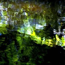 Karen  Majkrzak - Water Reflection