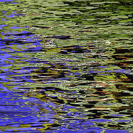 Allen Beatty - Water Reflections 5