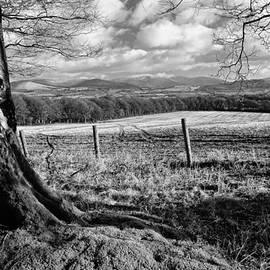Fergal Gleeson - Wicklow Countryside