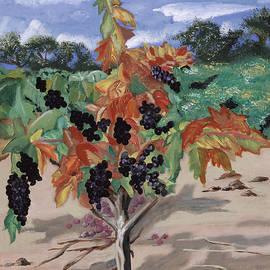 Reba Baptist - Wine Country