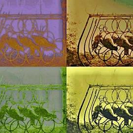 Rick Todaro - Wine Rack In a Barn Window
