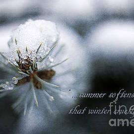 Darren Fisher - Winter