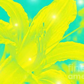 Lali Kacharava - Yellow Lily
