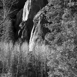 Raffi  Bashlian - Yosemite