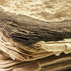 Sandra Foster - 100 Year Old Book Macro