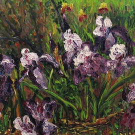 Vladimir Kezerashvili - Irises