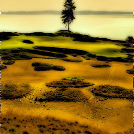 David Patterson - #15 at Chambers Bay - Location of the 2015 US Open