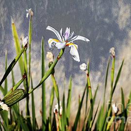 Laura L Leatherwood - Flower