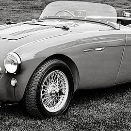 Jesse Merz - 1954 Austin-Healey 100S
