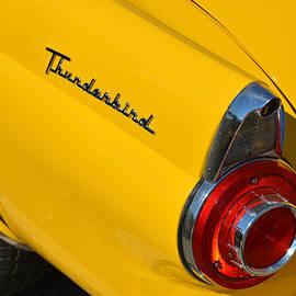 Mike Martin - 1956 Thunderbird