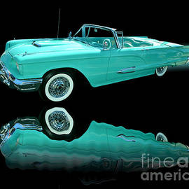 Jim Carrell - 1959 Ford Thunderbird