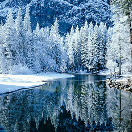 Tracy Knauer -  Merced River Reflection