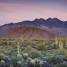 Saija  Lehtonen - A Desert Sunset