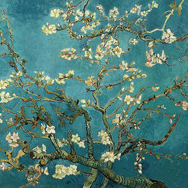 Vincent van Gogh - Almond Branches in Bloom