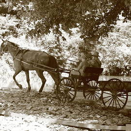 Dwight Cook - Amish and wagon 2 of 2