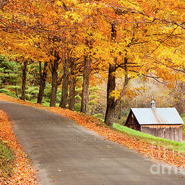 Brian Jannsen - Autumn Road