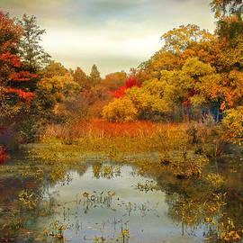 Jessica Jenney - Autumn Wetlands