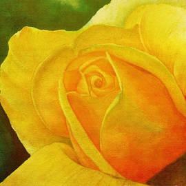 Anjali Vaidya - Blooming Beauty