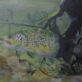Stephen Thomson - Brown Trout