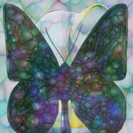 Jack Zulli - Butterfly