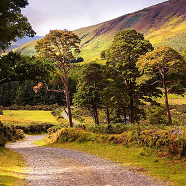 Jenny Rainbow - Celtic Spirit. Wicklow  Mountains. Ireland