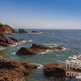 Svetlana Sewell - Coastline