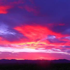 James Welch - Colourful Arizona Sunset