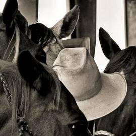 James Stough - Cowboy