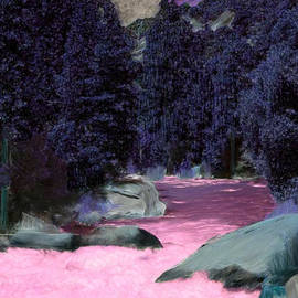 Bruce Nutting - Fantasy Forest
