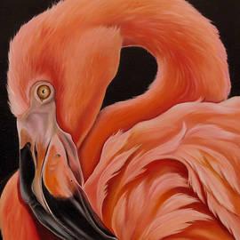 Phyllis Beiser - Flamingo Portrait