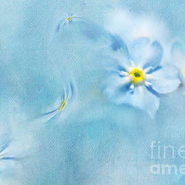 Svetlana Sewell - Forget-me-not