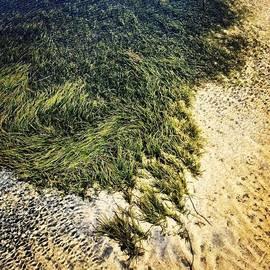 Dean Mountford - #goldcoast #queensland #broadwater