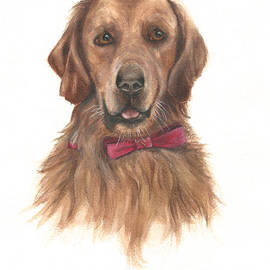 Nan Wright - Golden Retriever